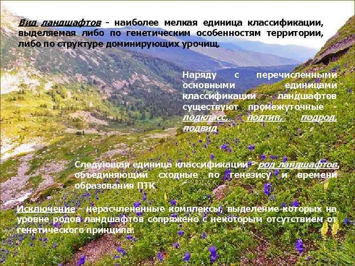 Вид ландшафтов  наиболее мелкая единица классификации, выделяемая либо по генетическим особенностям территории, либо