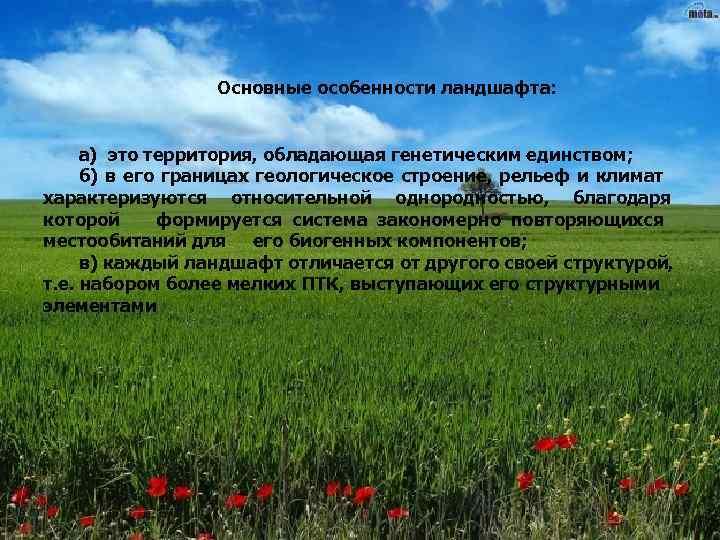 Основные особенности ландшафта:   а) это территория, обладающая генетическим единством;