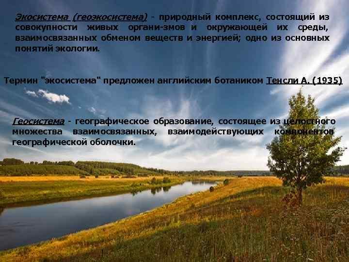 Экосистема (геоэкосистема)  природный комплекс, состоящий из  совокупности живых органи змов и