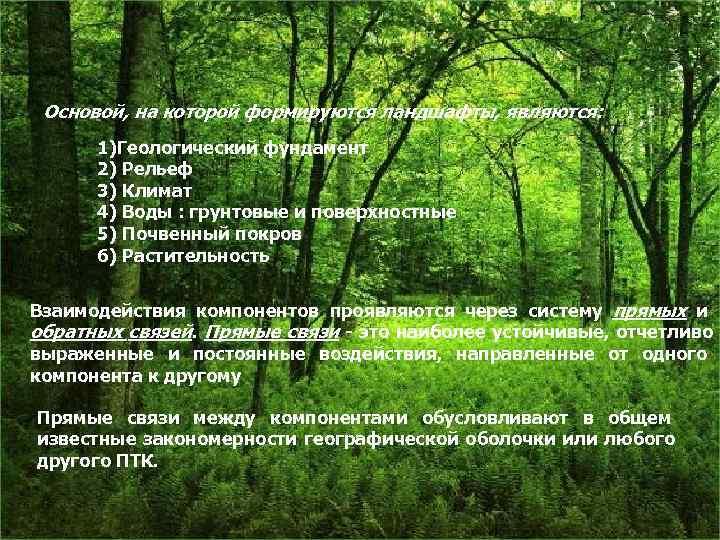 Основой, на которой формируются ландшафты, являются:  1)Геологический фундамент  2) Рельеф