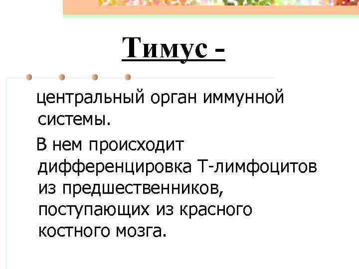 Тимус - центральный орган иммунной системы. В нем происходит дифференцировка Т-лимфоцитов из