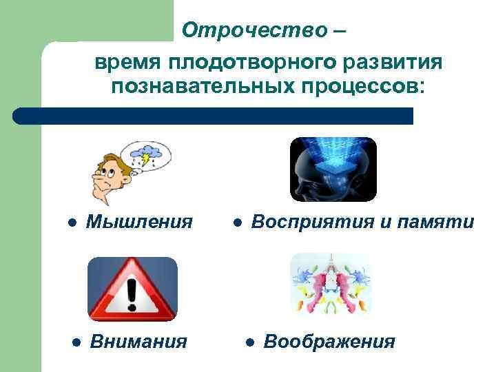 Отрочество – время плодотворного развития познавательных процессов: l  Мышления  l
