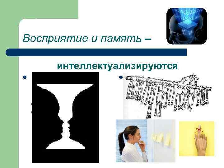 Восприятие и память –  интеллектуализируются l  в восприятии  l  память