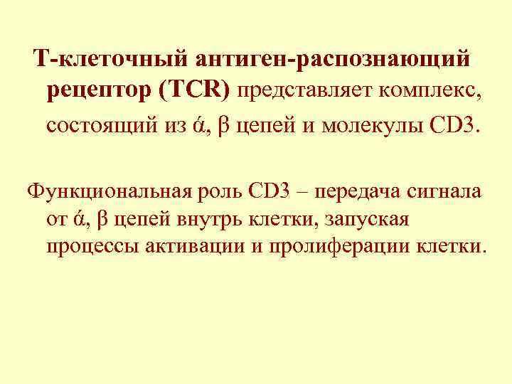 Т-клеточный антиген-распознающий рецептор (TCR) представляет комплекс,  состоящий из ά, β цепей и