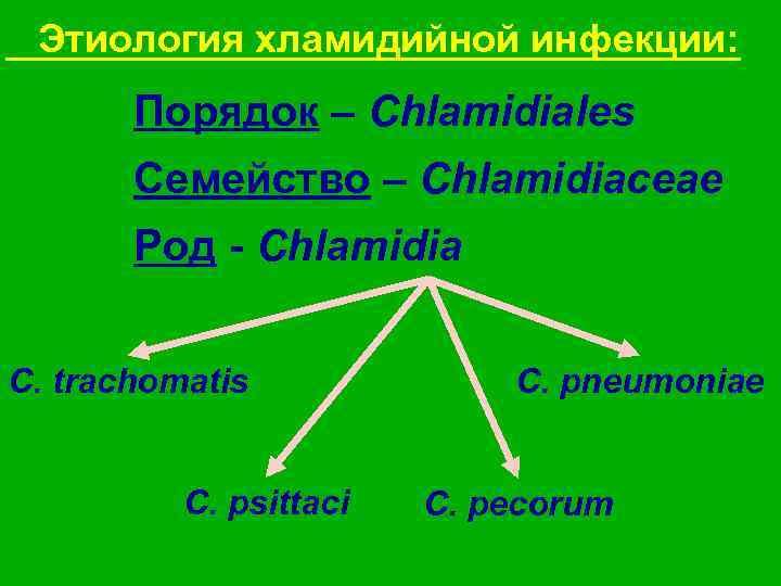 Этиология хламидийной инфекции:   Порядок – Chlamidiales  Семейство – Chlamidiaceae