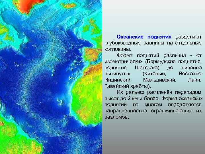 Океанские поднятия разделяют глубоководные равнины на отдельные котловины.  Форма поднятий различна -