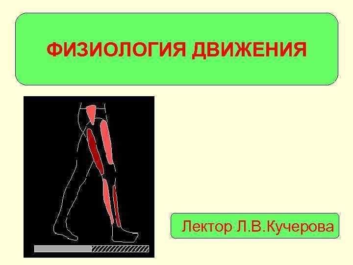 ФИЗИОЛОГИЯ ДВИЖЕНИЯ   Лектор Л. В. Кучерова