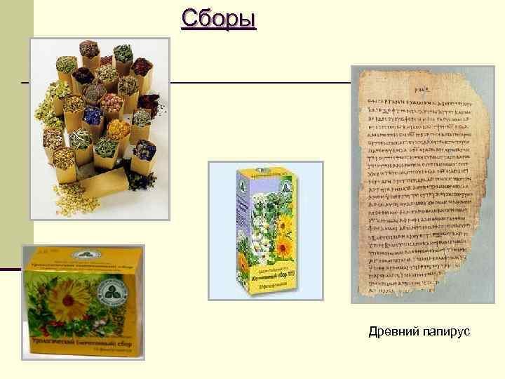 Сборы   Древний папирус