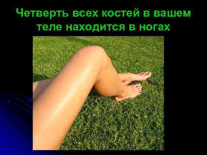 Четверть всех костей в вашем  теле находится в ногах