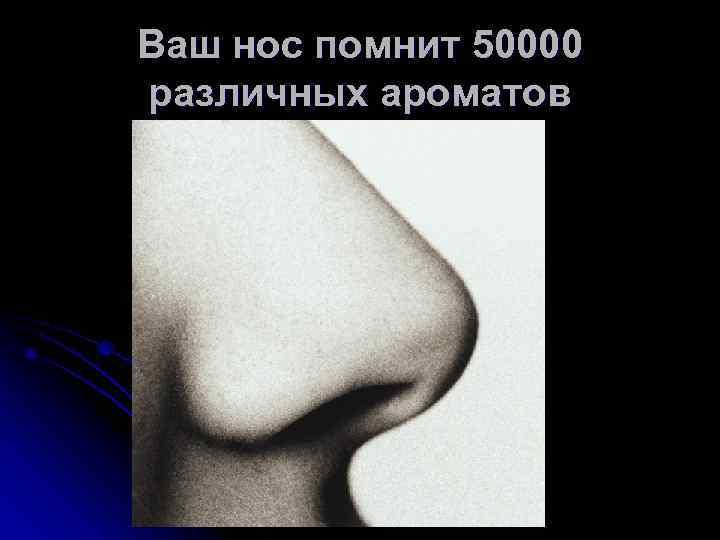 Ваш нос помнит 50000 различных ароматов