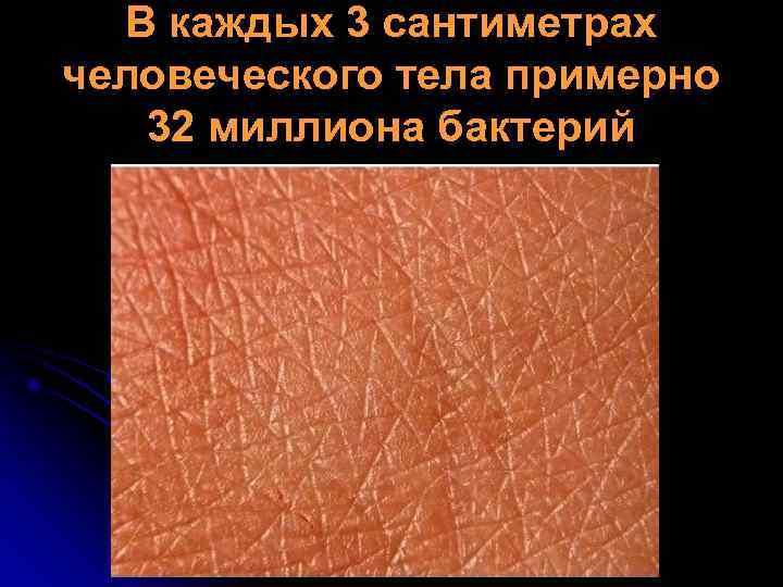 В каждых 3 сантиметрах человеческого тела примерно  32 миллиона бактерий