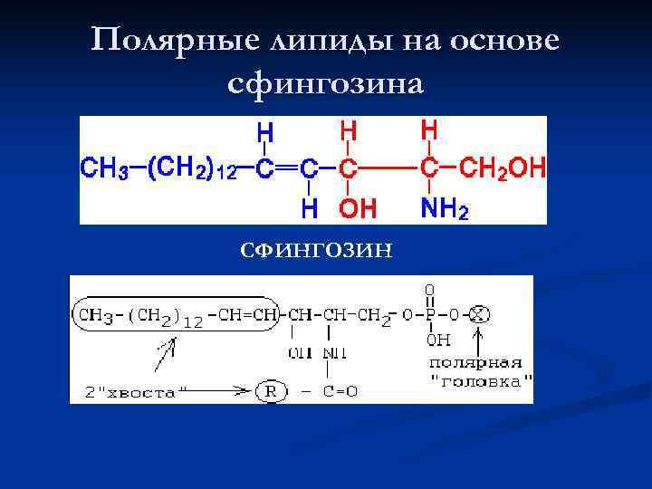 Полярные липиды на основе  сфингозина  СФИНГОЗИН