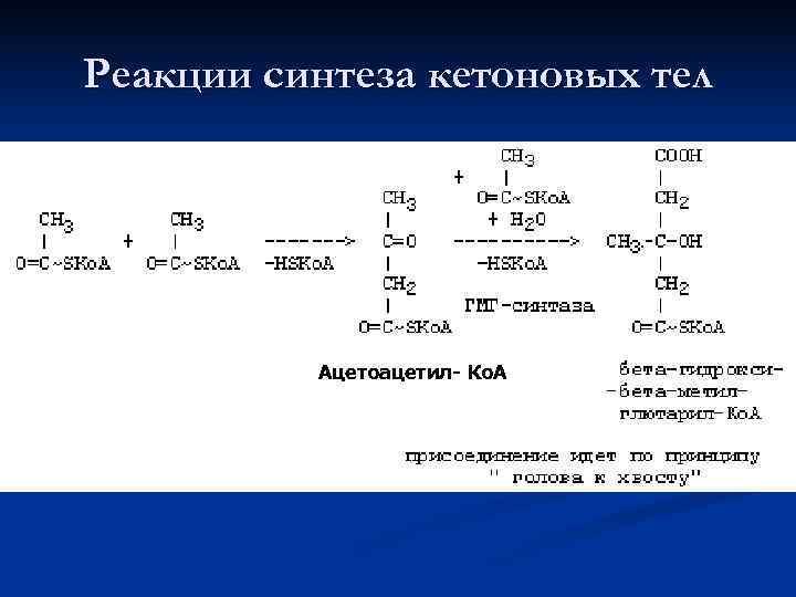 Реакции синтеза кетоновых тел    Ацетоацетил- Ко. А
