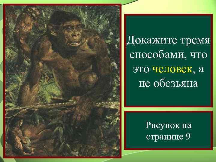 Докажите тремя способами, что это человек, а  не обезьяна Рисунок на  странице