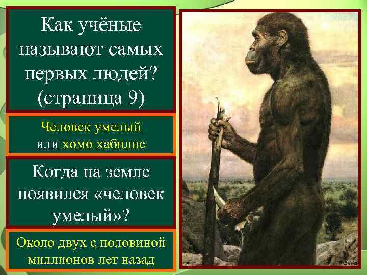 Как учёные называют самых первых людей?  (страница 9)  Человек умелый