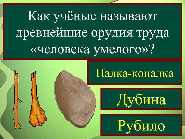 Как учёные называют древнейшие орудия труда  «человека умелого» ?   Палка-копалка
