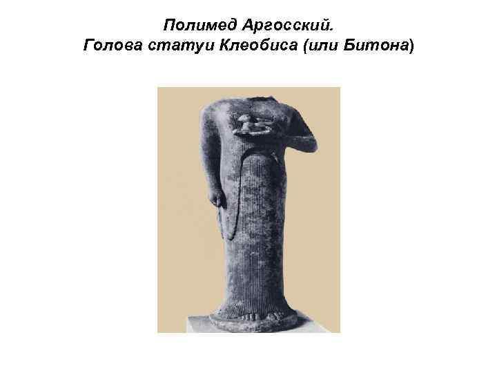 Полимед Аргосский. Голова статуи Клеобиса (или Битона)