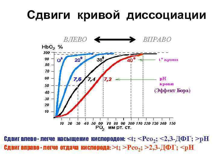 Сдвиги кривой диссоциации    ВЛЕВО    ВПРАВО
