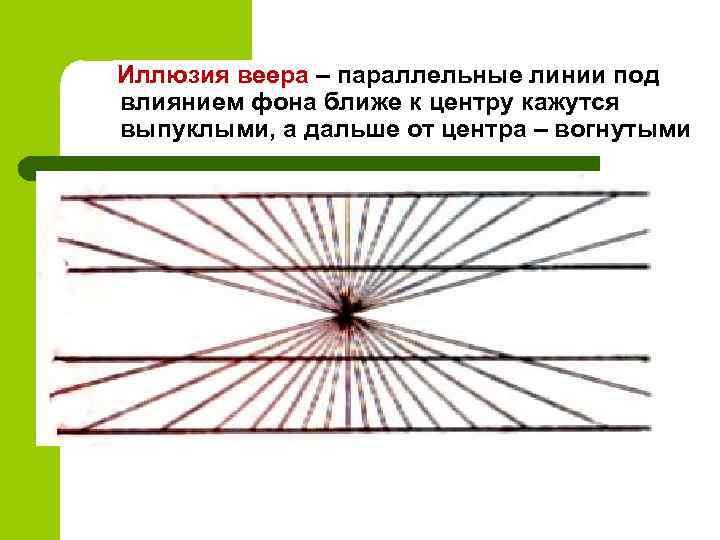Иллюзия веера – параллельные линии под влиянием фона ближе к центру кажутся выпуклыми, а