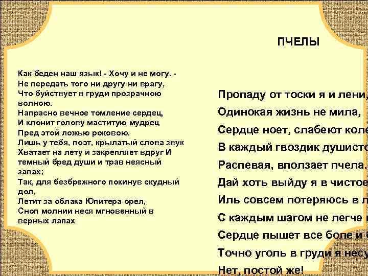 ПЧЕЛЫ  Как беден наш язык! - Хочу