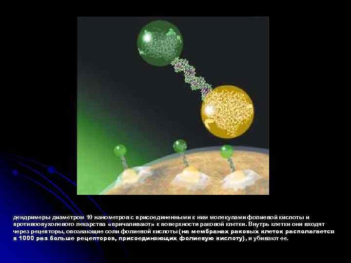 дендримеры диаметром 10 нанометров с присоединенными к ним молекулами фолиевой кислоты и противоопухолевого лекарства
