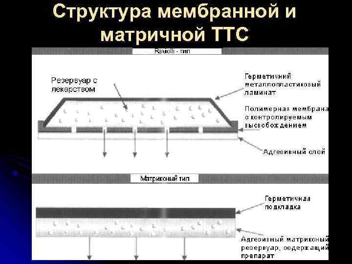 Структура мембранной и матричной ТТС