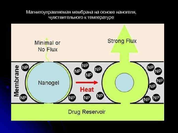 Магнитоуправляемая мембрана на основе наногеля, чувствительного к температуре