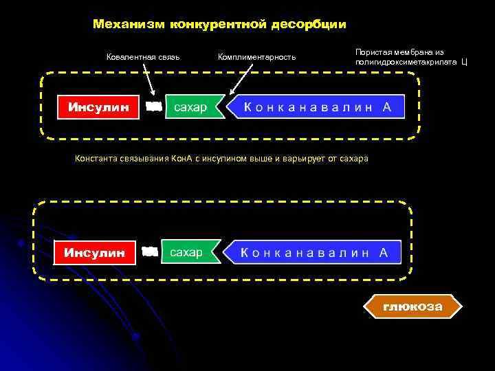 Механизм конкурентной десорбции Ковалентная связь Комплиментарность Пористая мембрана из полигидроксиметакрилата Ц Инсулин Константа связывания