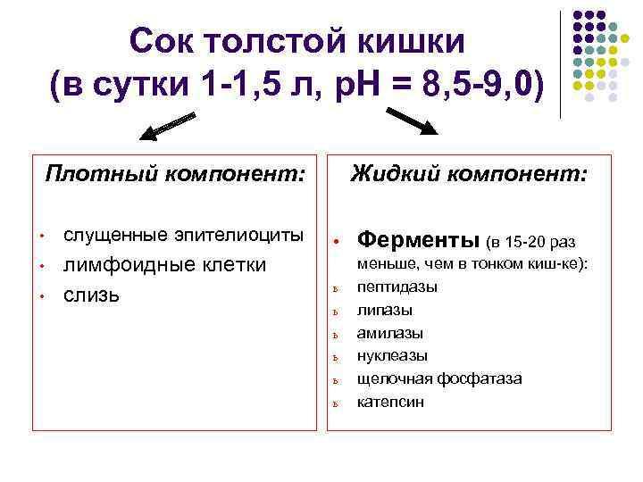 Сок толстой кишки (в сутки 1 -1, 5 л, р. Н