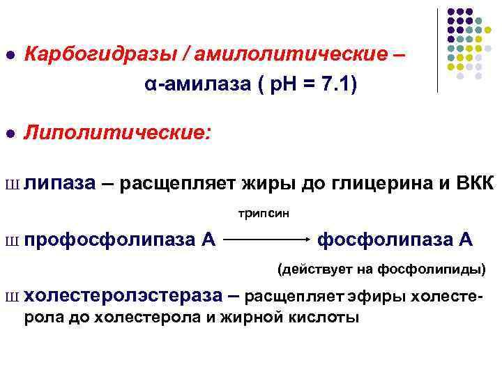 l  Карбогидразы / амилолитические –    α-амилаза ( р. Н =