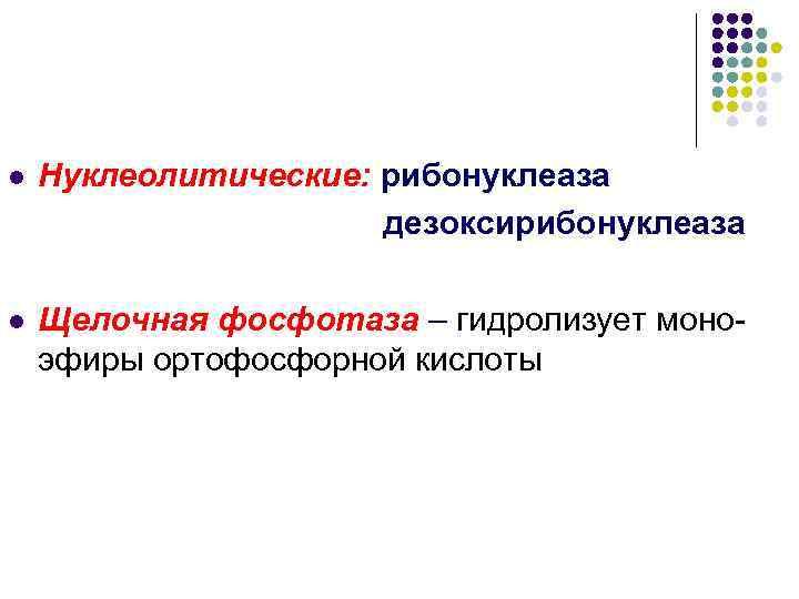 l  Нуклеолитические: рибонуклеаза    дезоксирибонуклеаза l  Щелочная фосфотаза – гидролизует