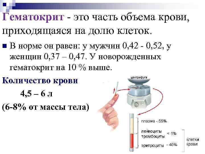 Гематокрит - это часть объема крови, приходящаяся на долю клеток. n В норме он