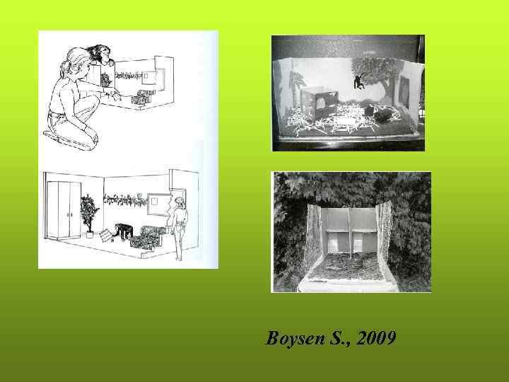 Boysen S. , 2009