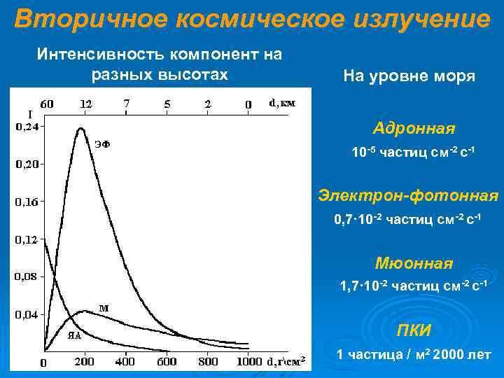Вторичное космическое излучение Интенсивность компонент на  разных высотах  На уровне моря