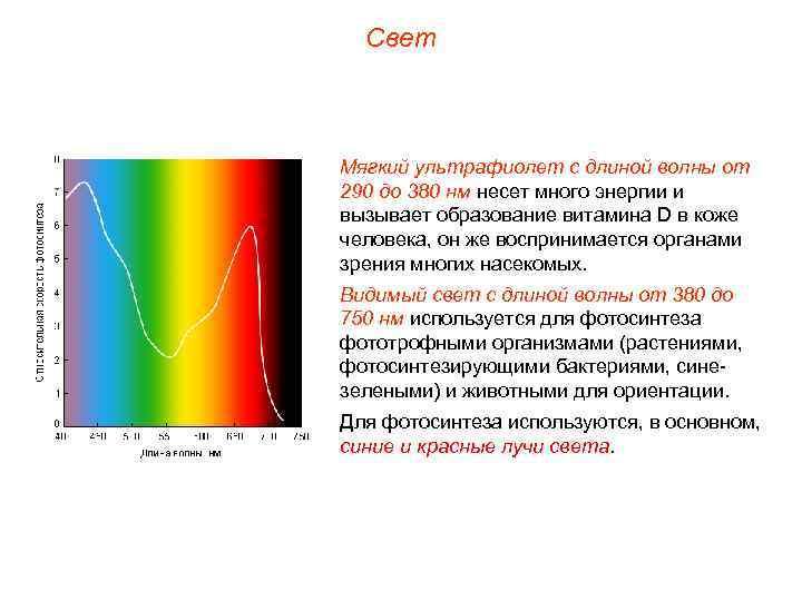Свет  Мягкий ультрафиолет с длиной волны от 290 до 380 нм несет