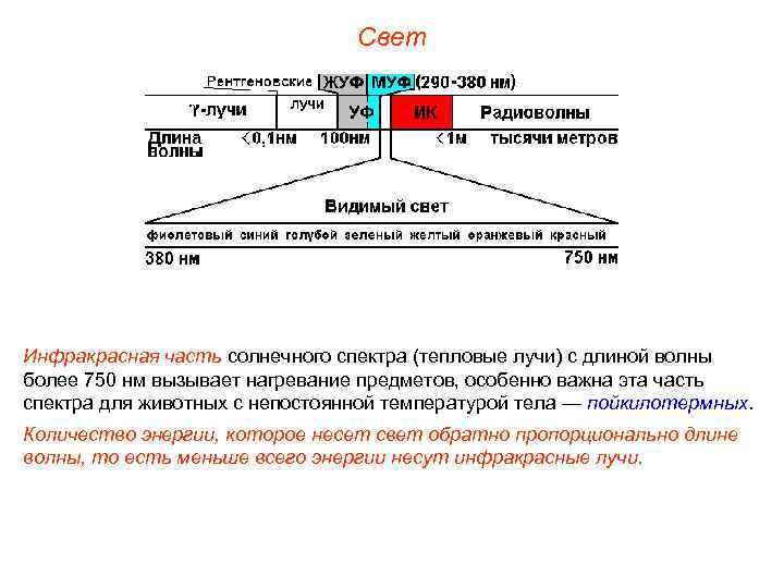 Свет Инфракрасная часть солнечного спектра (тепловые лучи) с