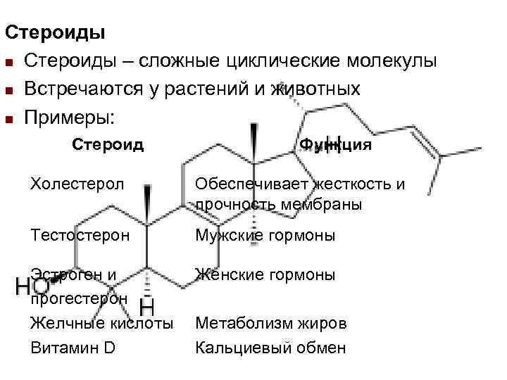 Стероиды n Стероиды – сложные циклические молекулы n Встречаются у растений и животных n