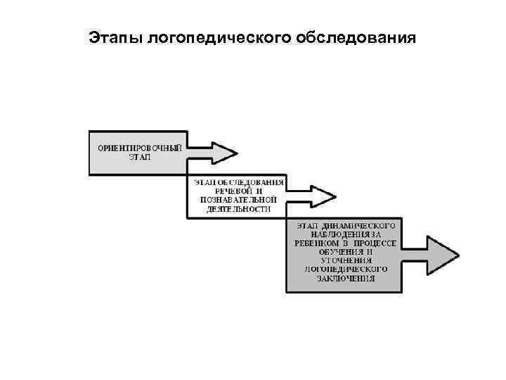 Этапы логопедического обследования