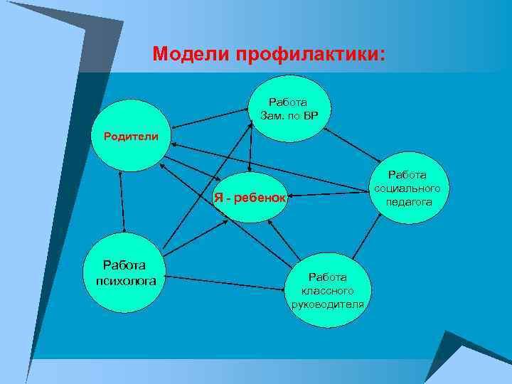 Модели профилактики:    Работа     Зам. по