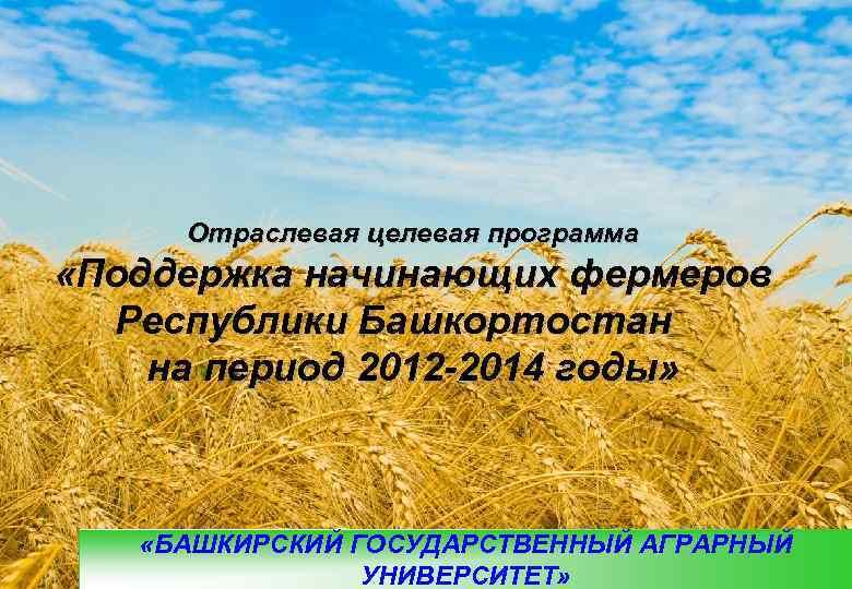 Отраслевая целевая программа «Поддержка начинающих фермеров  Республики Башкортостан на период 2012 -2014