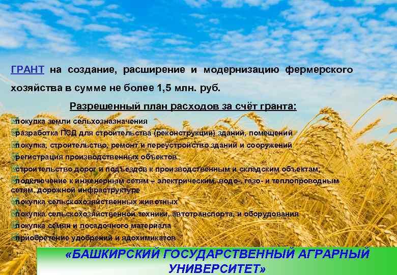 ГРАНТ на создание,  расширение и модернизацию фермерского хозяйства в сумме не более 1,