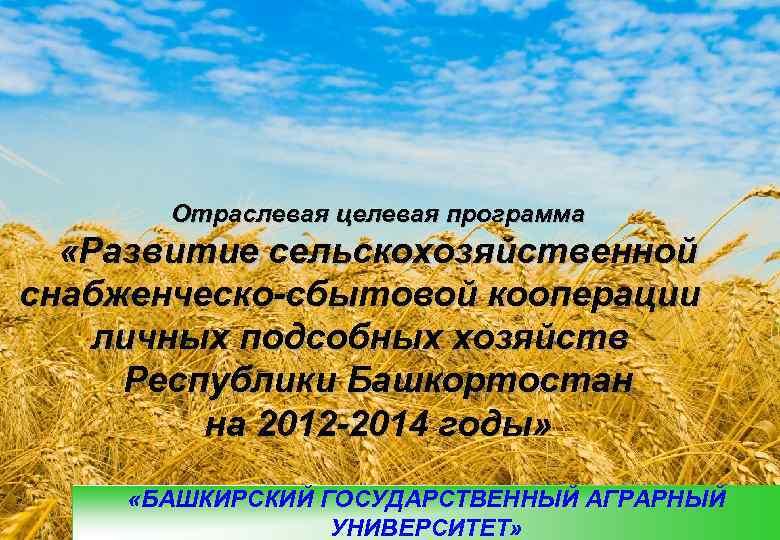 Отраслевая целевая программа  «Развитие сельскохозяйственной снабженческо-сбытовой кооперации личных подсобных хозяйств Республики
