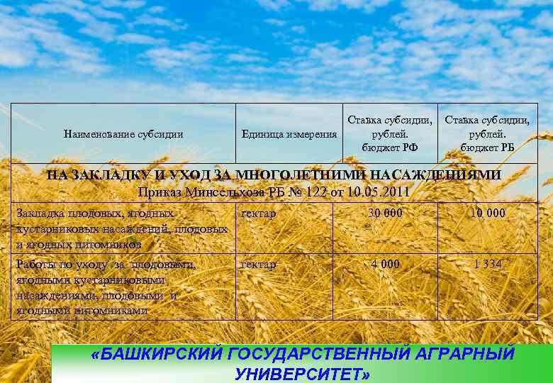 Ставка субсидии,  Наименование субсидии  Единица измерения рублей.