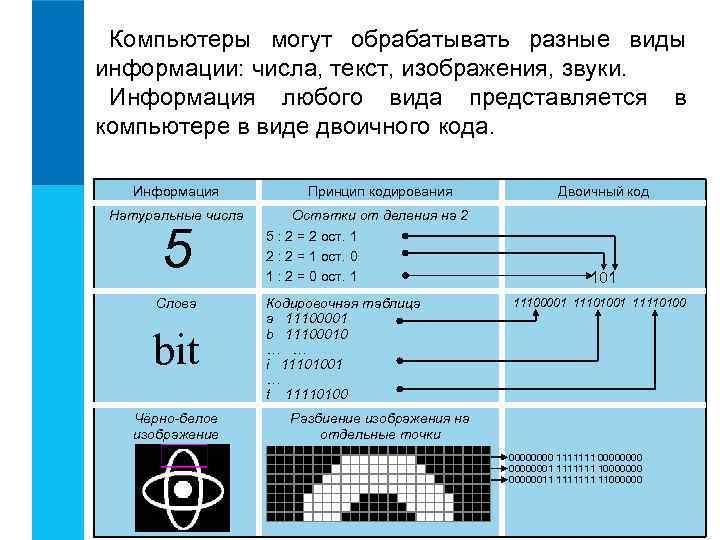 Компьютеры могут обрабатывать разные виды информации: числа, текст, изображения, звуки.  Информация любого