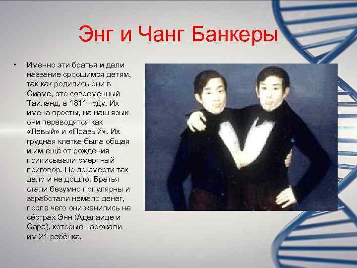 Энг и Чанг Банкеры •  Именно эти братья и дали