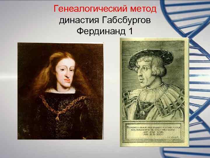 Генеалогический метод династия Габсбургов Фердинанд 1