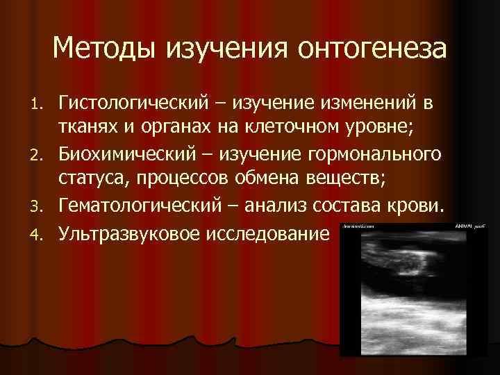 Методы изучения онтогенеза 1.  Гистологический – изучение изменений в тканях и органах