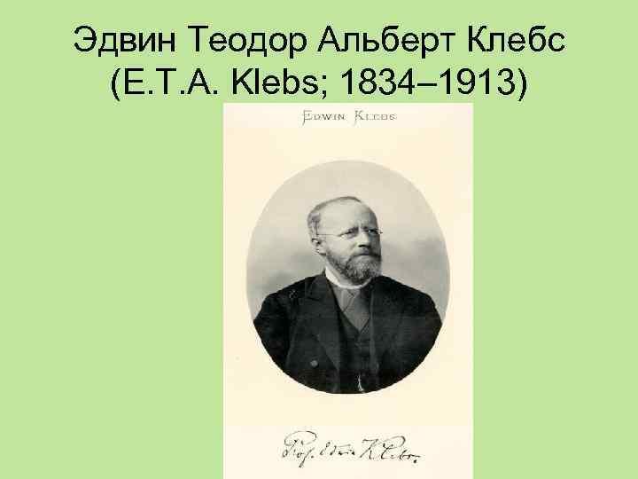 Эдвин Теодор Альберт Клебс  (Е. Т. А. Klebs; 1834– 1913)