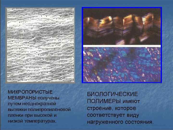 МИКРОПОРИСТЫЕ   БИОЛОГИЧЕСКИЕ МЕМБРАНЫ получены путем неоднократной  ПОЛИМЕРЫ имеют вытяжки полипропиленовой