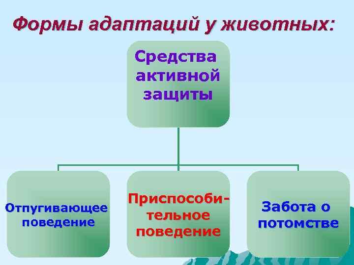 Формы адаптаций у животных:   Средства    активной   защиты